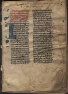 Codice di Leboino. ASLU, ms.110, sec. XIV